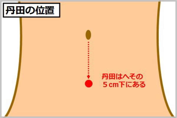 丹田の位置